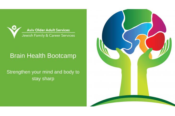 Brainhealth Bootcamp (1)