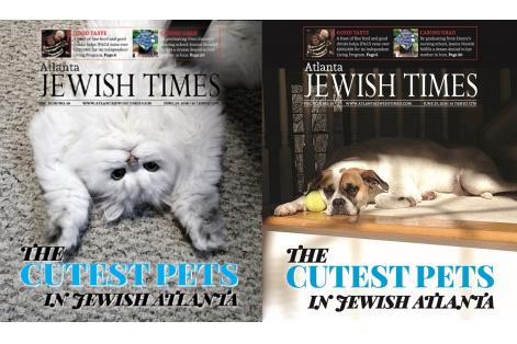 Pets of Jewish ATL Mock 2018