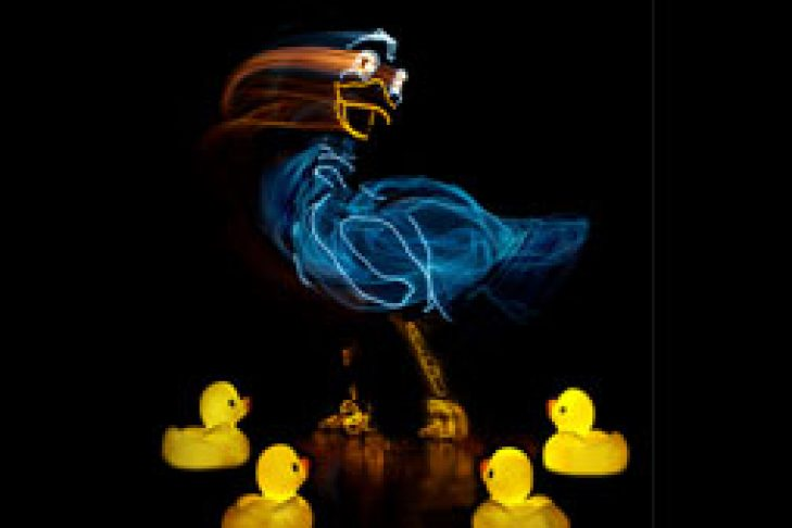 UGLY-DUCK-BEST-NO-FONT-MOTION-DUCK