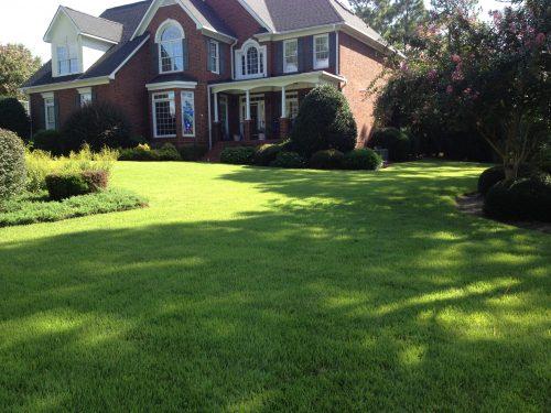 Lawn w house