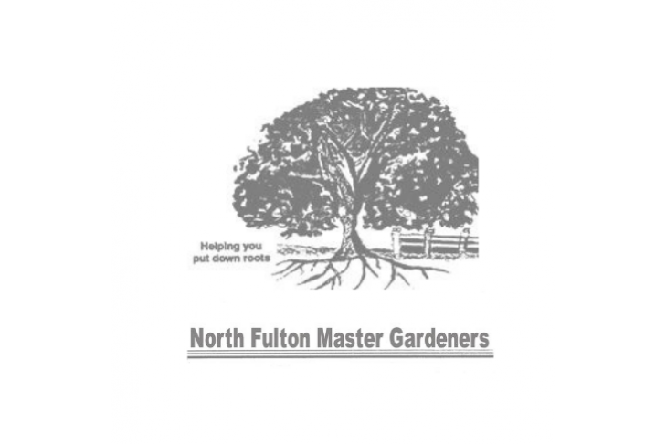 NFMG logo small