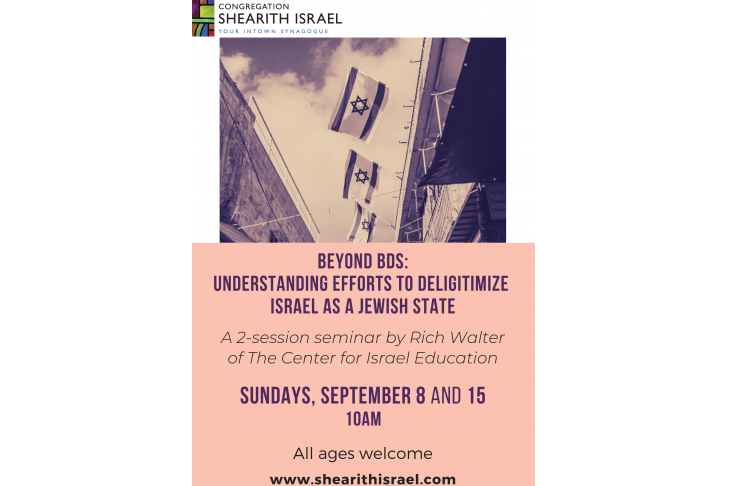 beyond BDS_ understanding efforts to deligitimize israel as a jewish state