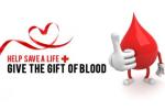 blood drive-1