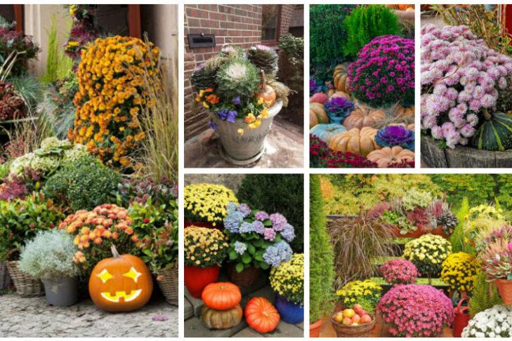 fall-garden-ideas-collage