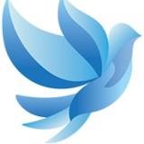 The Blue Dove Foundation