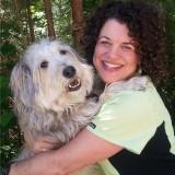 Wellness Waggin' Acupuncture & Laser