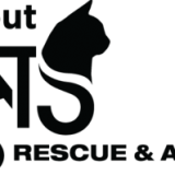 All About Cats Rescue